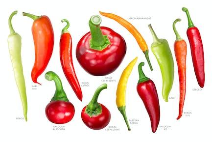 Ungarische Paprika