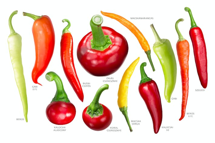 Thumbnail for Hungarian peppers