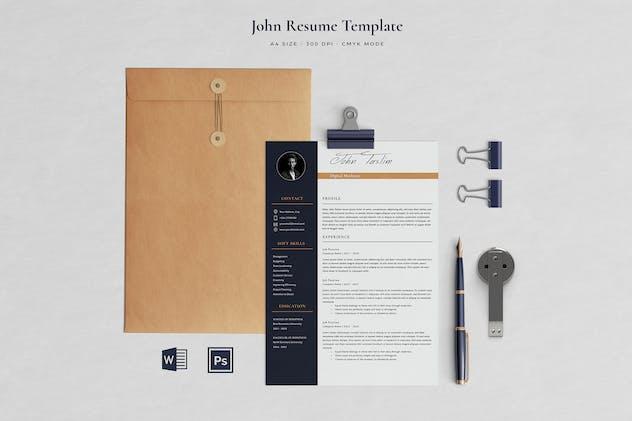 Professional Resume Taslim