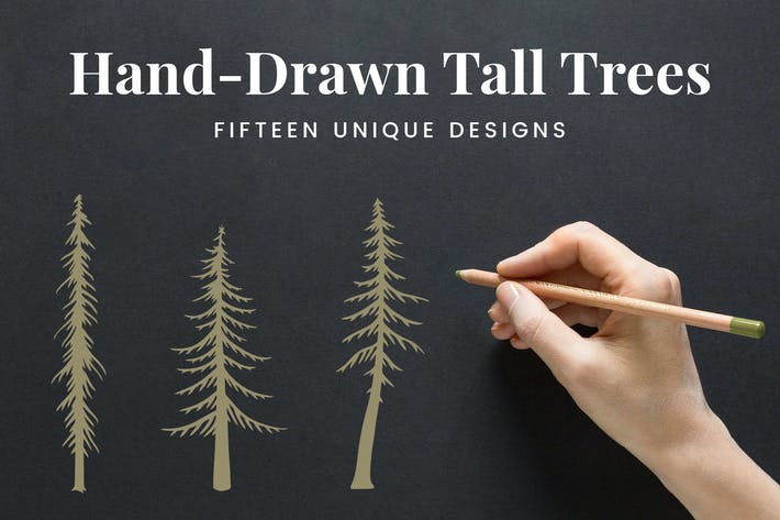 Thumbnail for Hand-Drawn Tall Trees