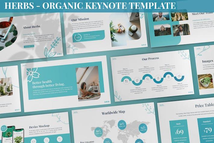 Herbs - Organic Keynote Template