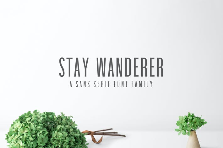Thumbnail for Stay Wanderer Sans Serif Font Family Pack