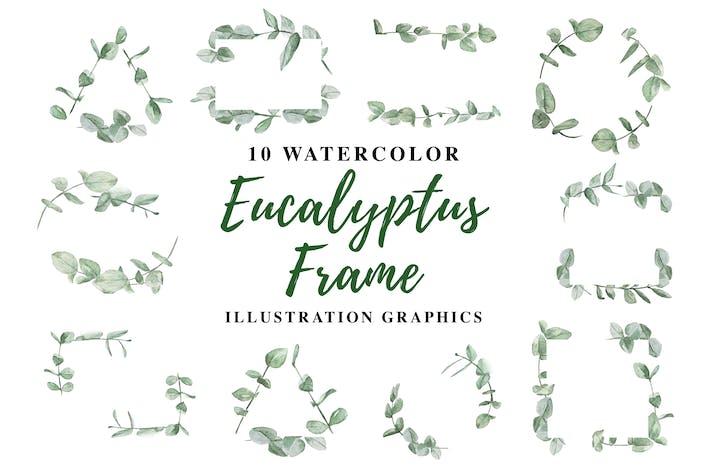 Thumbnail for 10 Aquarelle Eucalyptus Cadre Illustration