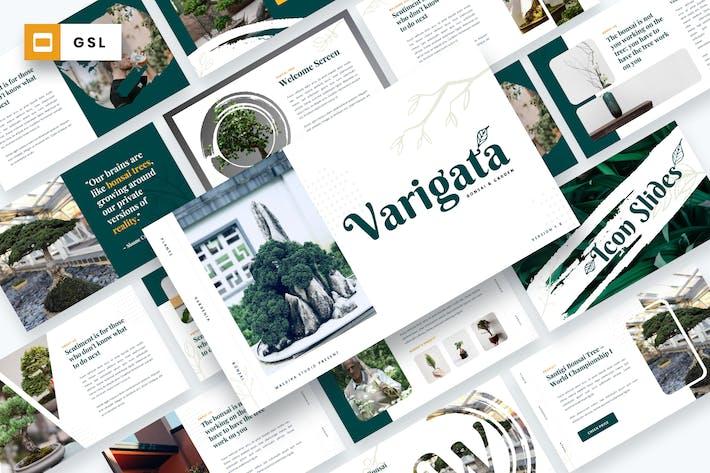 Thumbnail for Varigata - Bonsai Tree & Garden Google Slides