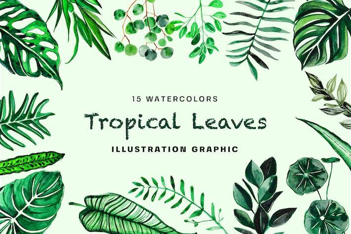 Thumbnail for Акварель «Тропические листья»