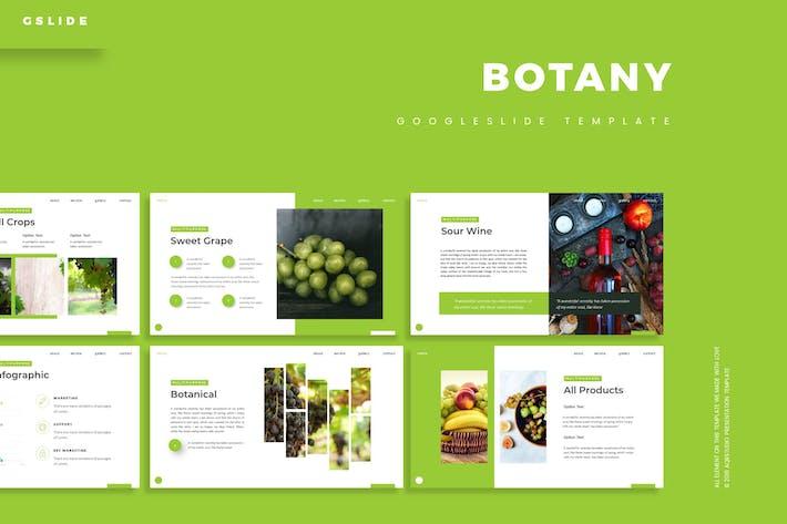 Botany - Google Slides Template