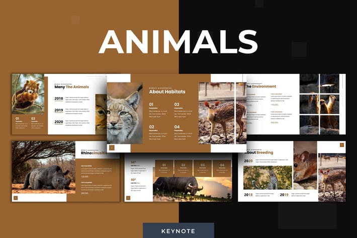 Thumbnail for Animals - Keynote Template
