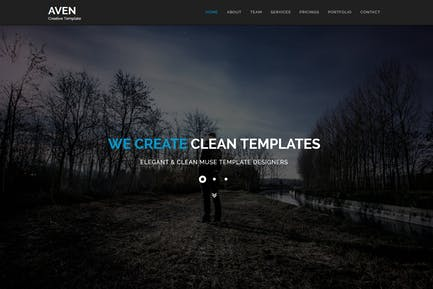 Aven - Multipurpose Parallax HTML Template