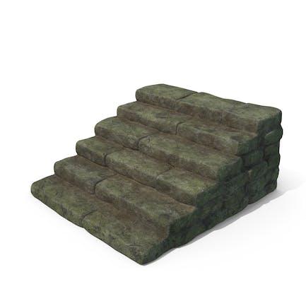 Moosbedeckte Steinschrit