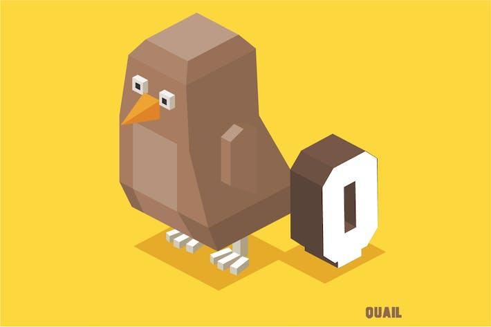 Thumbnail for Q für Wachtel. Tier-Alphabet