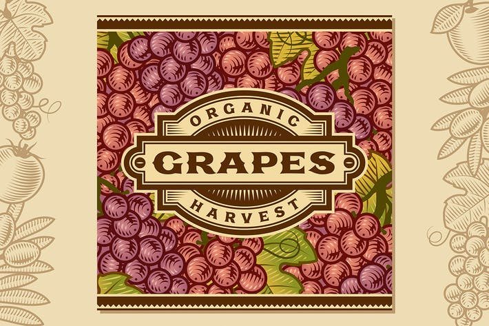 Thumbnail for Retro Grapes Harvest Label