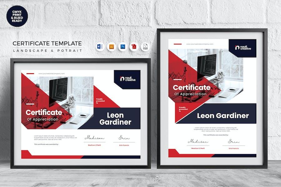 Professional Certificate Template Vol.20