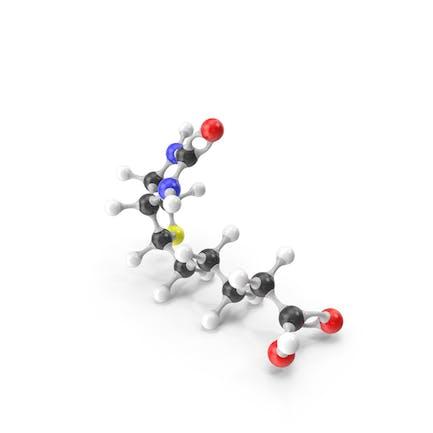 Biotin Vitamin B7 Molecular Model