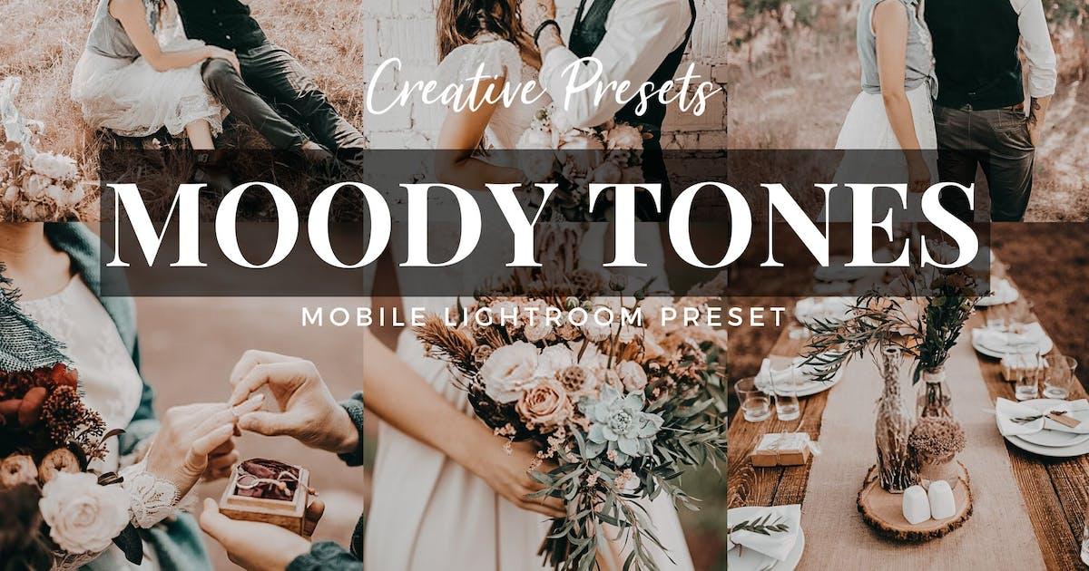 Download Moody Tones Mobile Lightroom Preset by 2FX