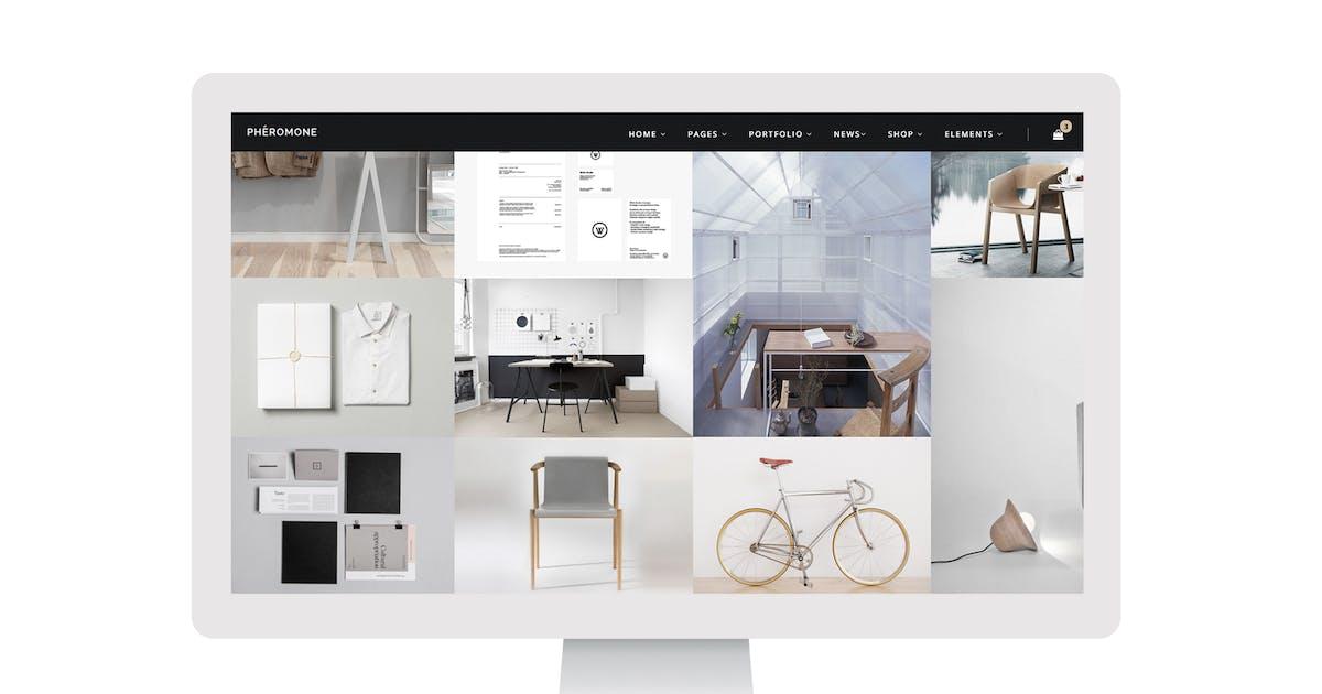 Download Pheromone - Smart Multi-Concept Template by ForBetterWeb