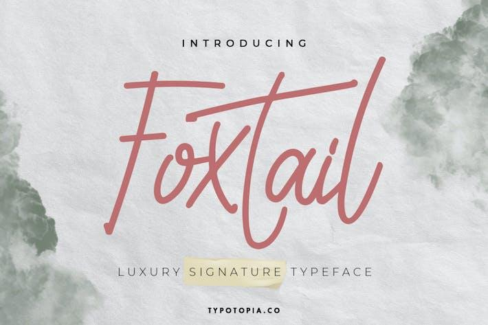 Шрифт почерка лисицы