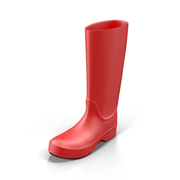 Cover Image for Rain Boot