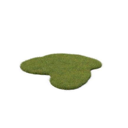 Forma irregular de la hierba