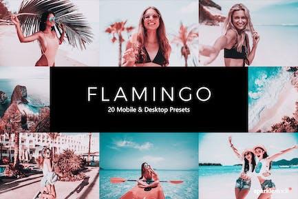 20 Flamingo Lightroom Presets & LUTs