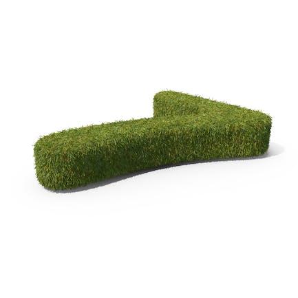 Grass Number 7 Ground