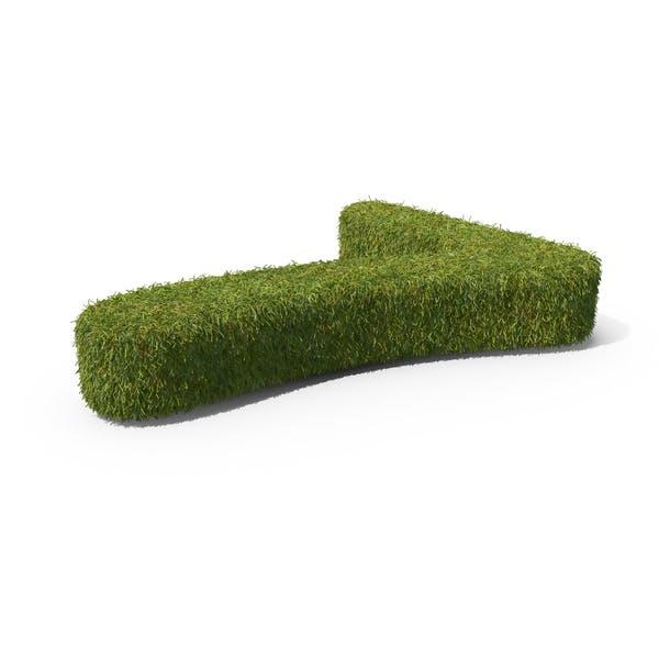 Grass Número 7 Suelo