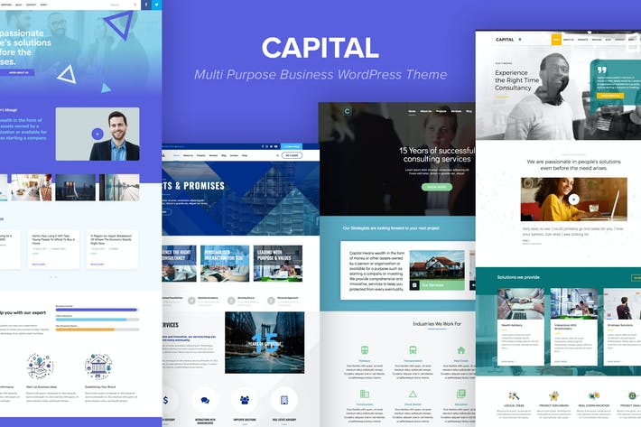 Thumbnail for Capital - Multi Purpose Business WordPress Theme