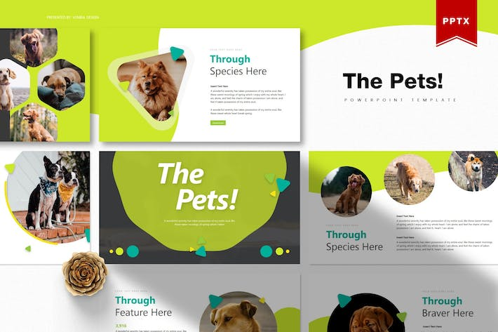 Thumbnail for The Pets | Powerpoint Template
