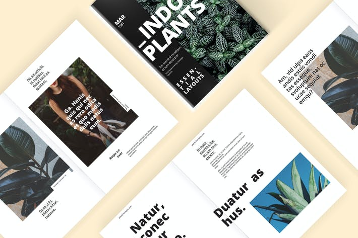 Thumbnail for Indoor Plants - A Magazine Template