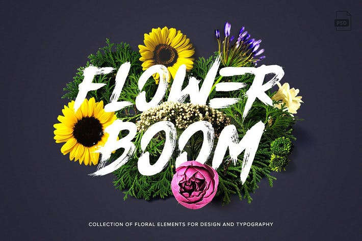 Thumbnail for Flower Boom Graphic Pack