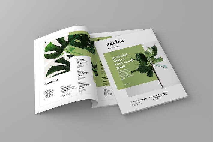 Thumbnail for Agrica - Magazine Template