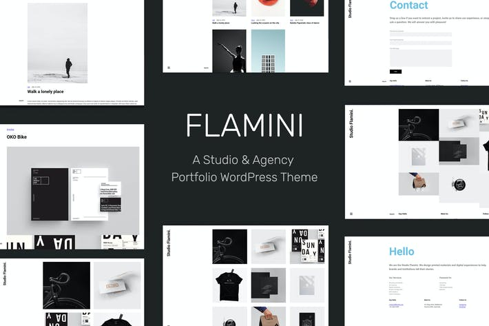 Cover Image For Flamini - Studio/Agency Portfolio WordPress Theme