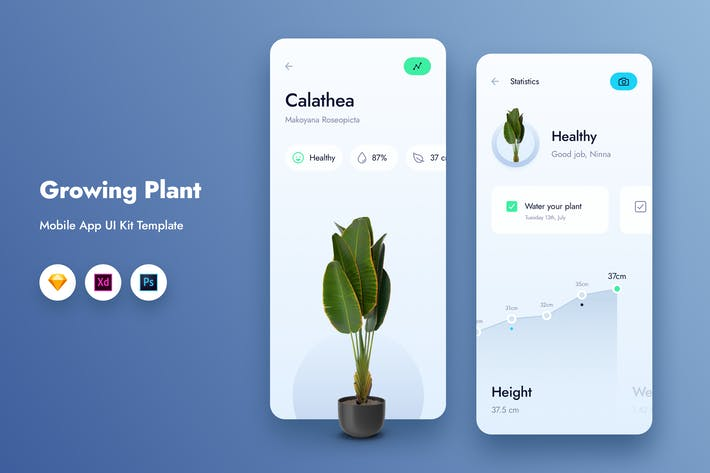 Thumbnail for Growing Plant Mobile App UI Kit Template