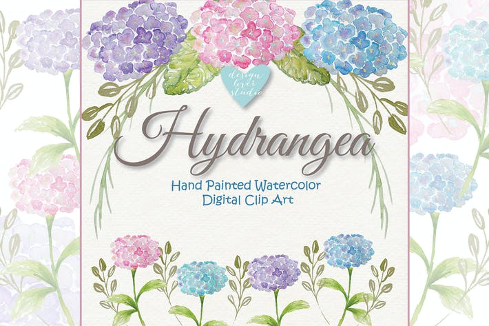 Thumbnail for Watercolor Hydrangea clipart