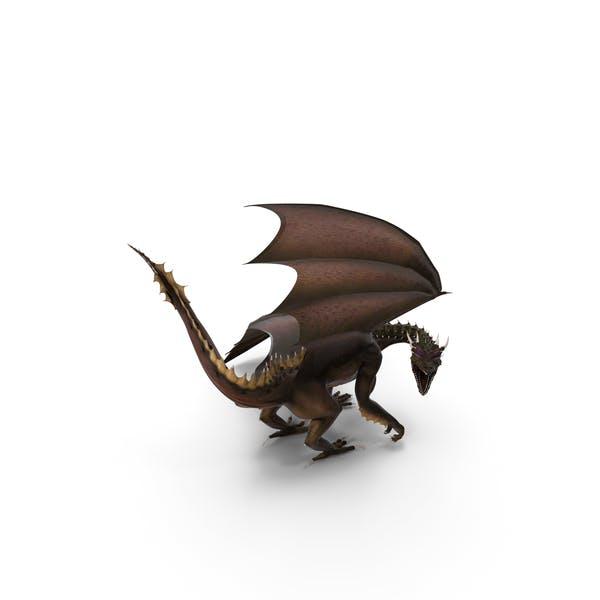Dragon Looking Backwards