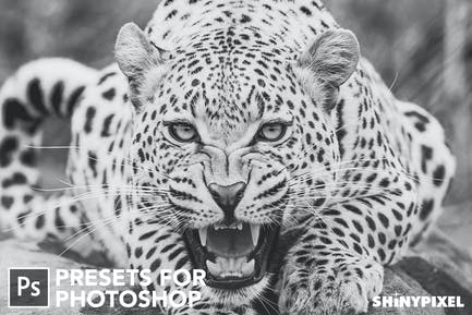 Monochromatic Vol. 1 - 20 Photoshop Presets