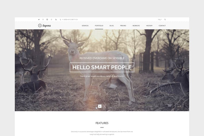 Thumbnail for Sapona – Onepage PSD Template