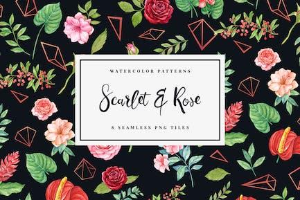 Scarlet & Rose - Seamless Patterns