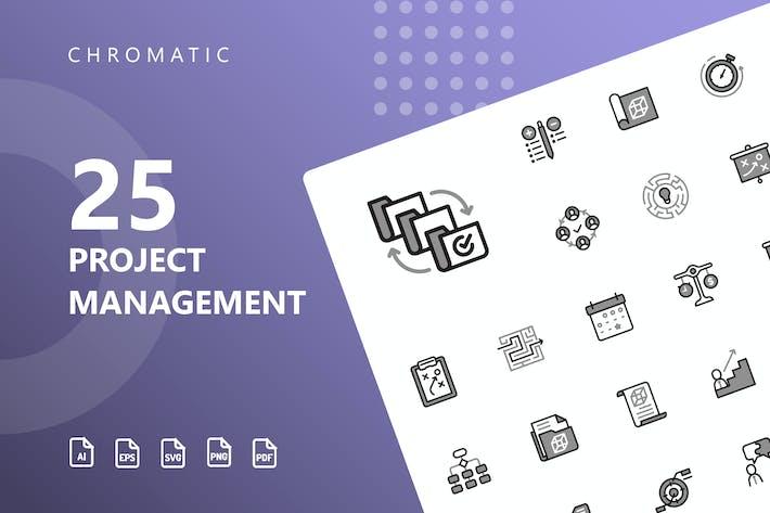 Thumbnail for Íconos cromáticos de gestión de proyectos