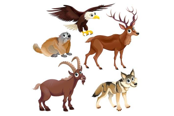 Thumbnail for Mountain Animals