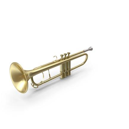 Crookless Trumpet