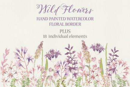 Wild Flower Border in Watercolors