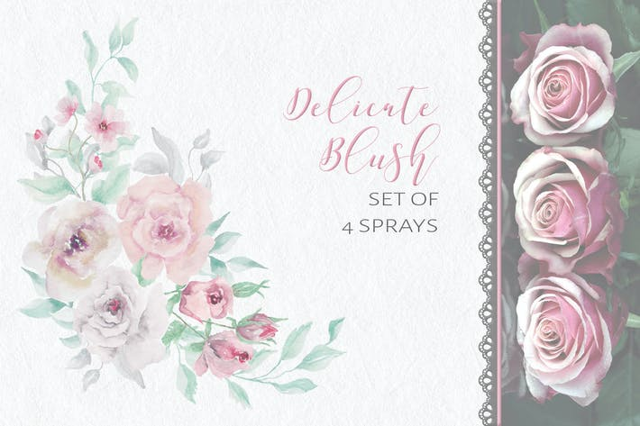 Cover Image For Delicate Blush: Set of Sprays
