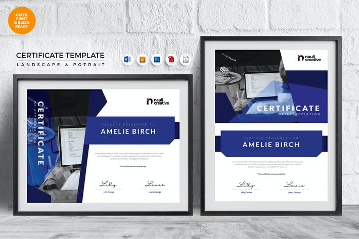 Thumbnail for Professional Certificate Template Vol.3