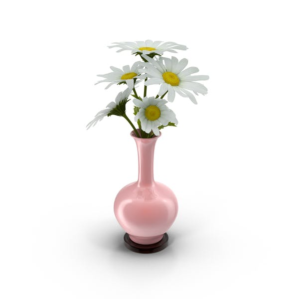 Cover Image for Vase Full Of Daisies
