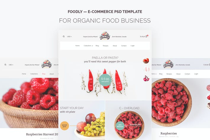 Thumbnail for Foodly — Organic Food Store PSD Template