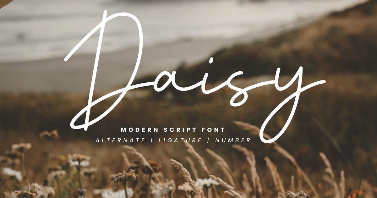 Download Daisy - Modern Script Font by naulicrea