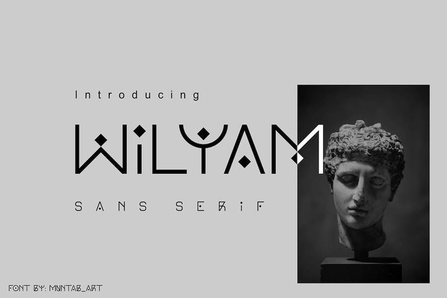 Wilyam | Modern Sans Serif font