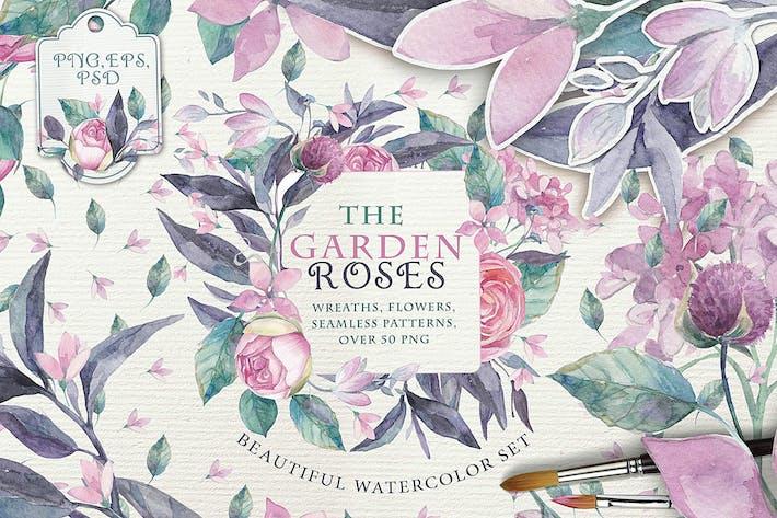 Thumbnail for The garden roses