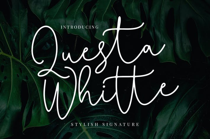 Thumbnail for Questa Whitte Script