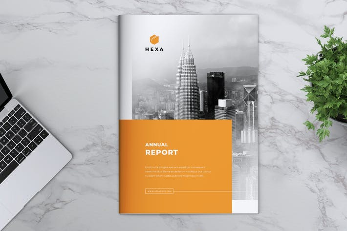 Thumbnail for HEXA Corporate Annual Report